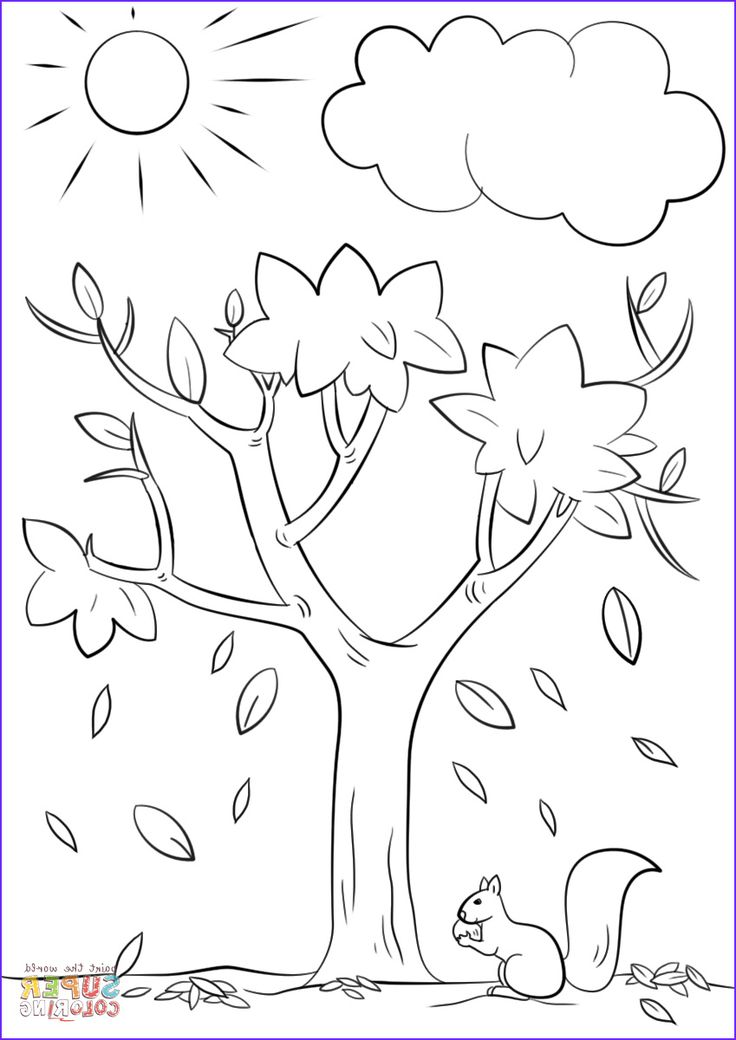 Autumn Tree coloring page in 2020 Fall coloring sheets