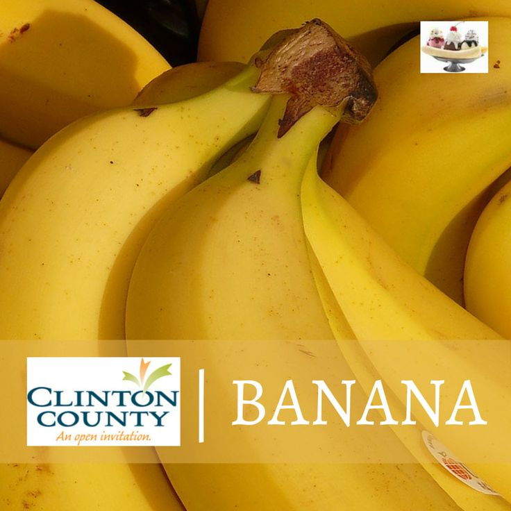June 12-13, 2015 - We've been ripening bananas all year long! Come celebrate the birthplace of the banana split with a wonderful weekend festival... Crafts & collectibles, live music, a cruise-in and car show, make your own banana split booth AND more!  http://clintoncountyohio.com/list/festivals/festivals-banana-split-festival  #bananas #bananasplits #foodies #culinary #festivals #OhioFestivals #families #familyfun #midwesttravel #familytravel #summertravel