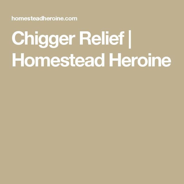 Chigger Relief | Homestead Heroine                              …