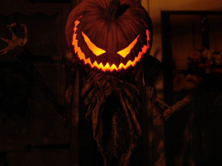 17 best images about halloween pumpkin creatures on for Pumpkinrot tutorial