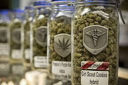 WEED FOR SALE  go to : realweedshop.com  High quality grade marijuana delivered to your door No medical ID card needed Super stealth double vacuum sealed shipping Bags that weight properly. You won't get shorted!