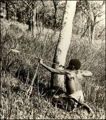 A Negrito Man Hunting Wild Boar --- A Mighty Warrior of the Philippines by Okinawa Soba, via Flickr. That arrow is practically a spear.
