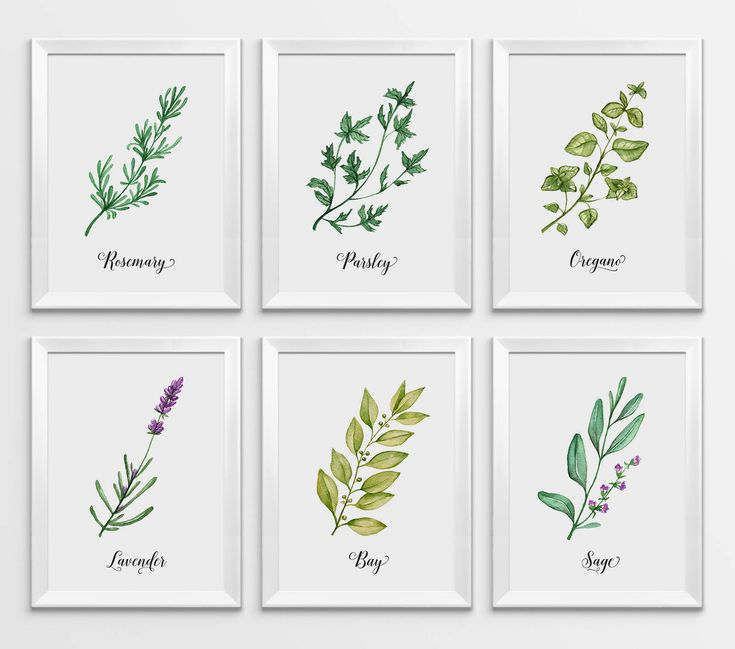 Herbs Print, Watercolor Herbs, Kitchen Print, Kitchen Decor, Herbs Wall Art, Herbs Printable, Kitchen Printable, Botanical Printable, Herbs by WallPrintFactory on Etsy https://www.etsy.com/listing/552418581/herbs-print-watercolor-herbs-kitchen