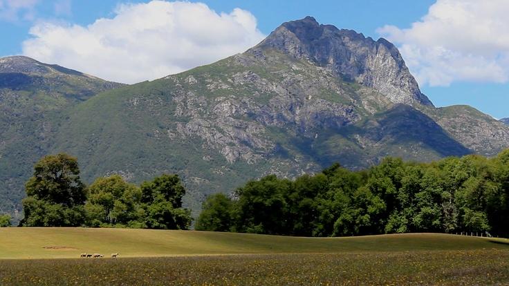 Quilaco, sector Loncopangue. Foto de John Escobar.