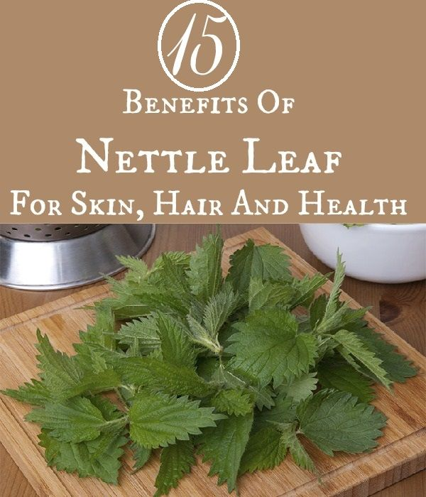 Nettle benefits and side effects