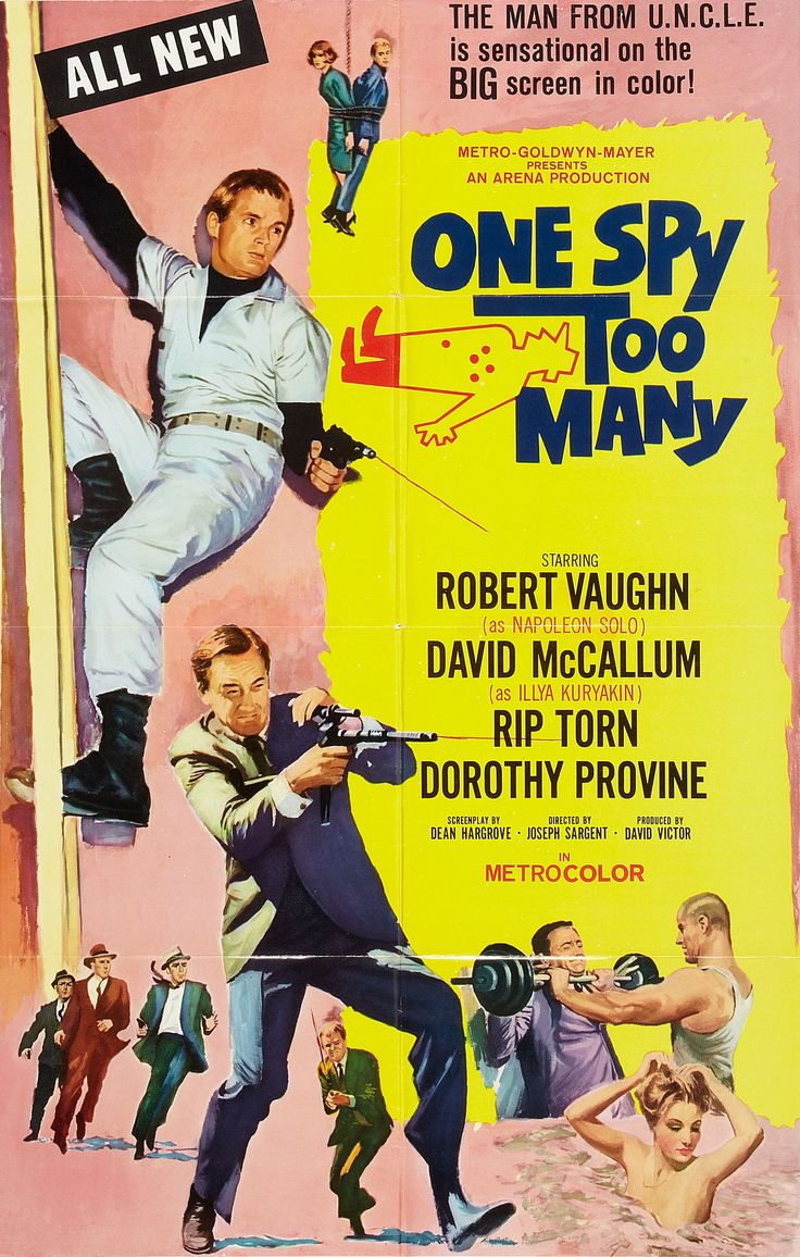 One Spy Too Many