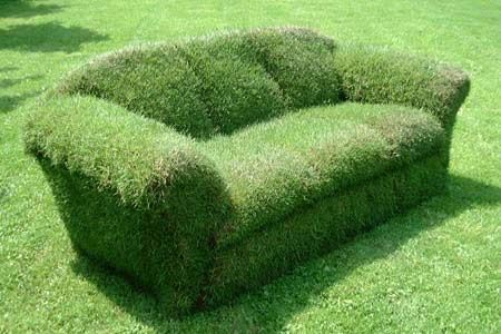 Sod Bench Google Search Water And Landscape Pinterest