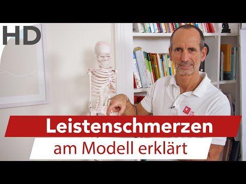 Leistenschmerzen am Modell erklärt // Adduktoren, Adduktorenschmerzen, Adduktorenzerrung - YouTube