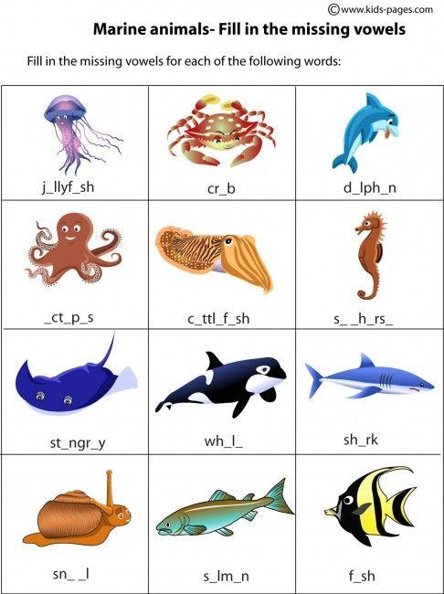 Kids Pages - Marine Animals