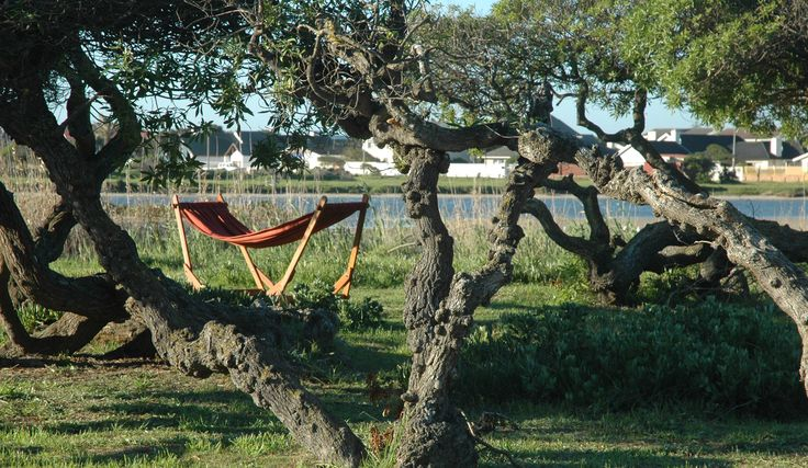 www.dreamtimehammocks.co.za - The hammock stand can be carried around - very easy to move.