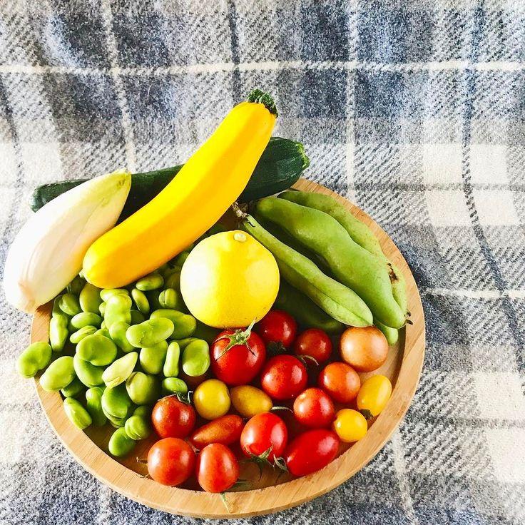 2017.05.12  ソラマメが沢山  塩茹でして ソースに 天麩羅に  チコリズッキーニと 春になり 野菜が沢山  色々な料理に カタチを変え 登場します  Lots of fava beans  Boil it in salt To source In tempura  Chicory with zucchini It is spring A lot of vegetables  To various dishes Change the shape Appears.  #vegetables #strawberry #vsco #foodpic #foodstragram #vscocam #instafood #instavsco #IGersJP #foodphoto #onthetable #vsco_food #vscogram #fodstyling #feedfeed #mycommontable #foodvsco #foodlover #wine #winelover #barredevink #LIN_stragrammer #オトコノキッチン…