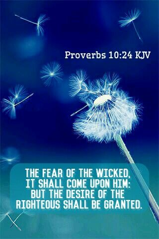 Daily proverbs study