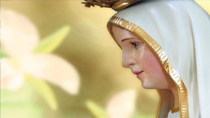 Mensaje de la Virgen de Medjugorje, Mensaje del 25 de agosto de 2016