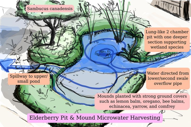 120 best swales earthworks ponds rainwater images on for Design of water harvesting pond