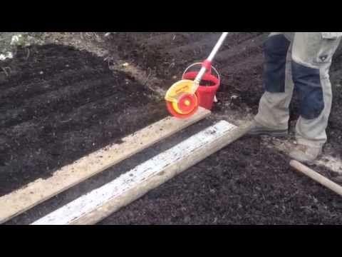 semer des carottes sans travail du sol sur compost de déchets verts - YouTube