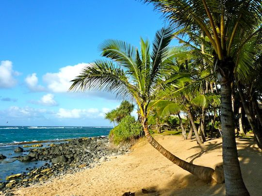 To 5 Things to DO in Maui #hawaiianvacation | Must do ...
