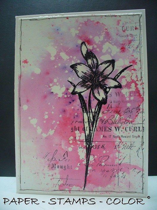 Katzelkraft GD paarsrose bloem collage  - background flicked with bleach
