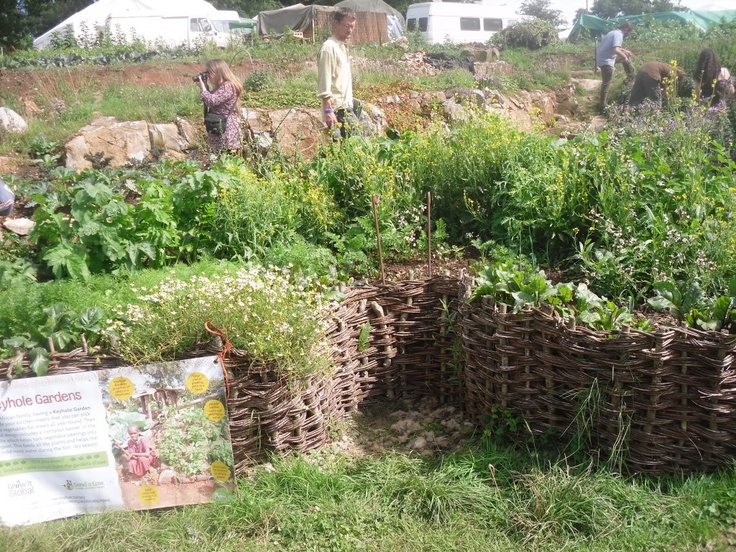 17 best images about keyhole gardening on pinterest for Keyhole garden designs