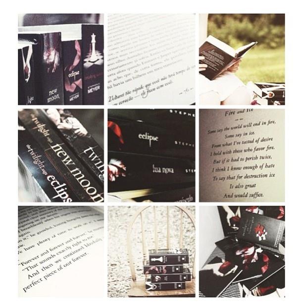 twilight saga book 5 pdf