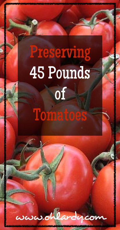 Preserving 45 Pounds of Tomatoes - Oh Lardy :: Want all the Oh Lardy awesomeness delivered right to your inbox?  Grab our newsletter here: https://il313.infusionsoft.com/app/form/d0d7082c8e0308d3bca548dedc511cae