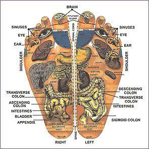 Reflexology information.