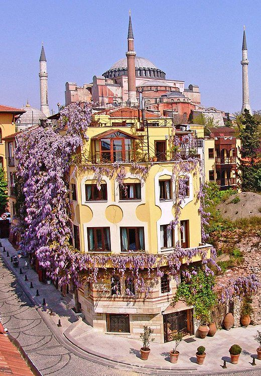 The spot our team most wanted to move into in Istanbul? The wisteria-covered Empress Zoe Hotel, which practically sits in the shadow of Hagia Sophia.