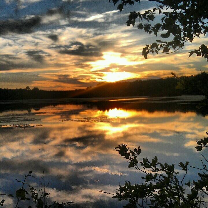 Lake Fred, Stockton College