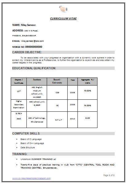 professional curriculum vitae  resume template for all