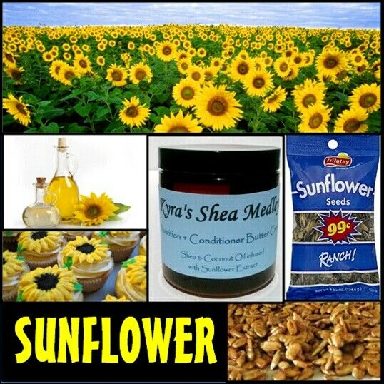 #Sunflower is a main ingredient in KSM Nutrition + Conditioner Butter Cream along with Shea Butter and Coconut Oil!