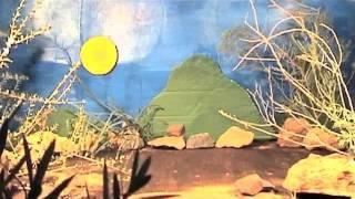 Tiddalik Dreamtime story