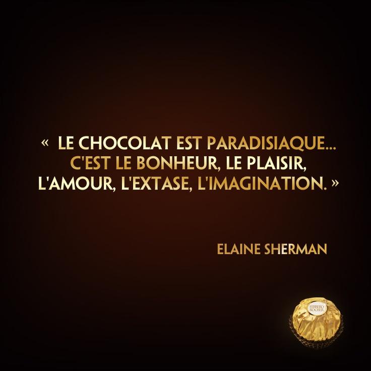 """☆Citation divine☆ """"Le chocolat est paradisiaque... c'est le bonheur, le plaisir, l'amour, l'extase, l'imagination.""""  (Elaine Sherman)"""