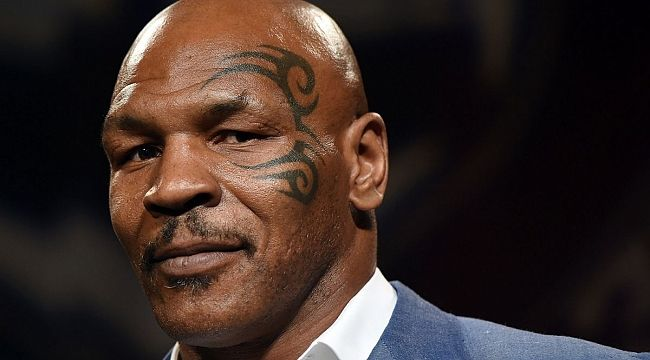 Mike Tyson marijuana işine girdi! ABD'li boksör ve oyuncu Mike Tyson, California'da esrarın yasallaştırılması kararının ardından harekete geçti. Ünlü isim, 40 dönüm büyüklüğünde bir çiftlik satın alarak marijuana yetiştirmeye başladı. #ABDhaberleri #usanews #news #turkishnews