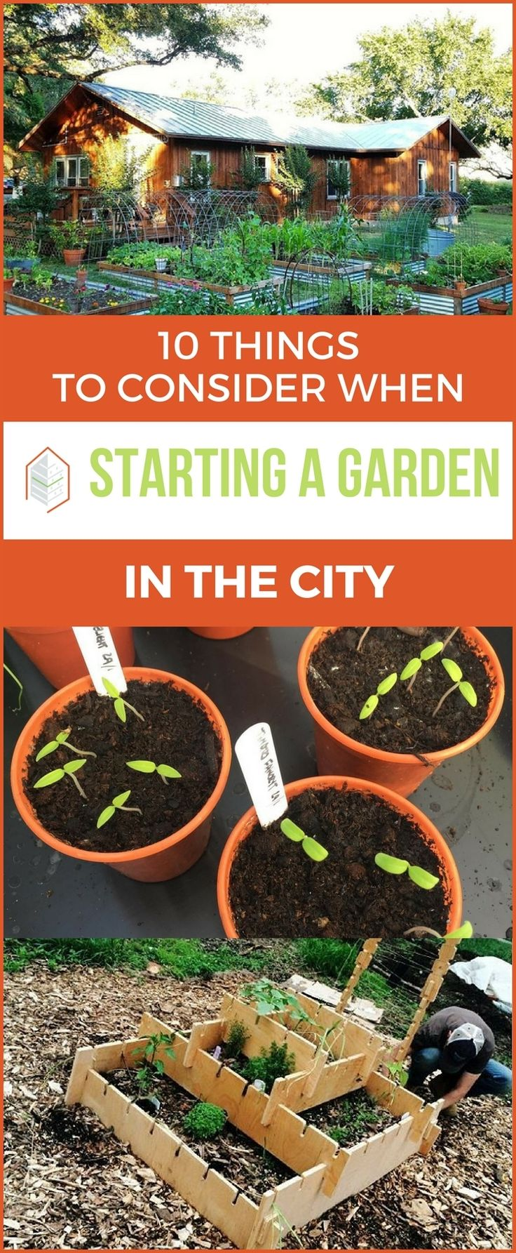 Starting a Garden in the City: 10 Things to Consider. Starting a garden in the city? Urban gardening needs planning, creativity and effective use of available space. 10 tips to guide you on how to do so. #urbangardening #urbanfarming #gardening #diy #gard