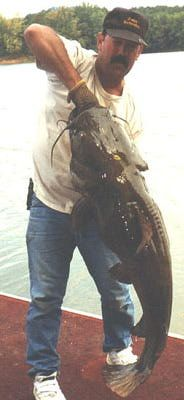 Big Catfish Pictures: Robbie Robinson With Big Flathead Catfish