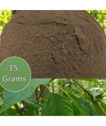 Buy online Kratom Extracts at discounted price. We ship all orders free of charge and they are shipped same day as they received.