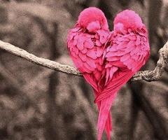 pink hearts on We Heart It