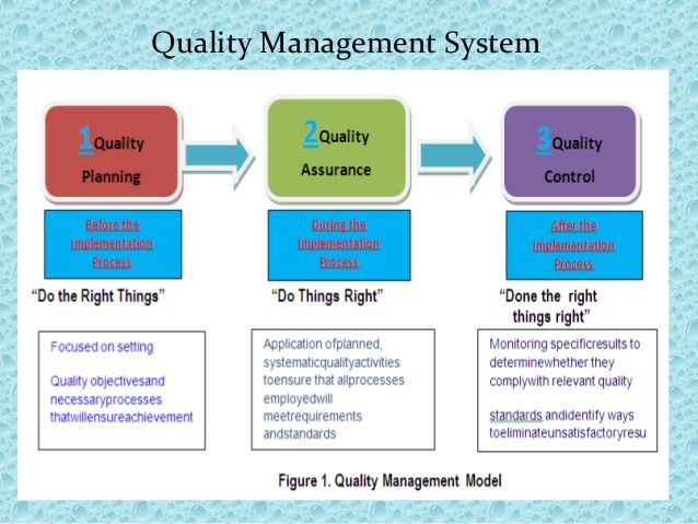 Quality Management System Qms Systems 101 Input