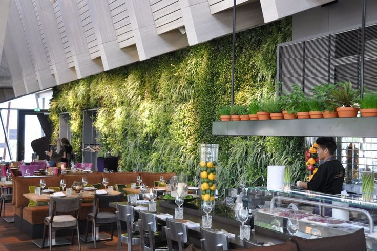 Download Amazing Garden Decorative Indoor Wall Garden And Vertical Hydroponic Kitchen Garden With Hanging Pottery Rack At Luxury Restaurant And Bar HD Wallpapers