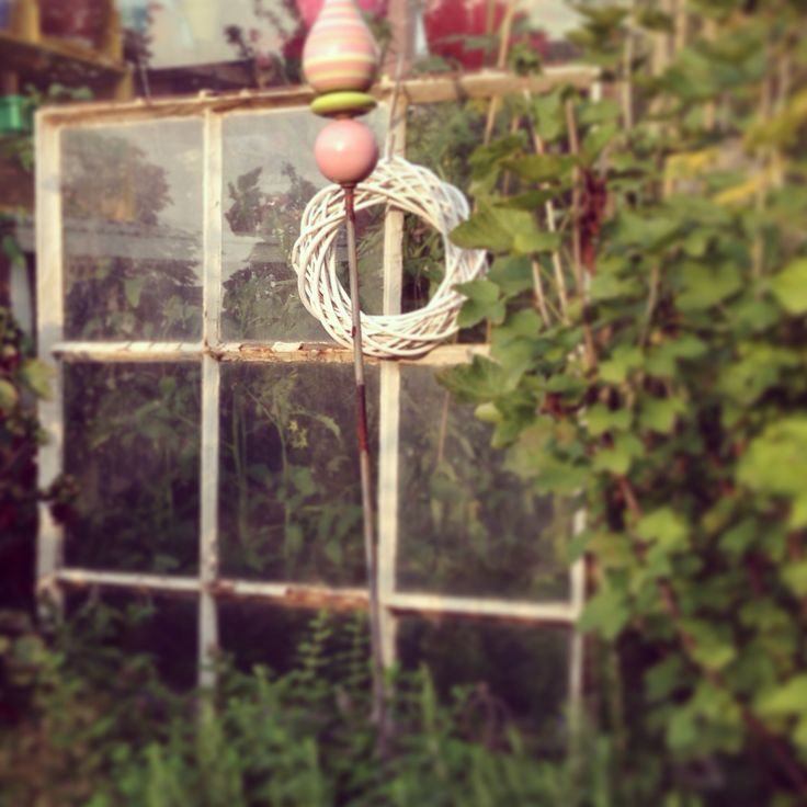 Altes Fenster im Kräuter-Beet / Old window / herbs / rosemary