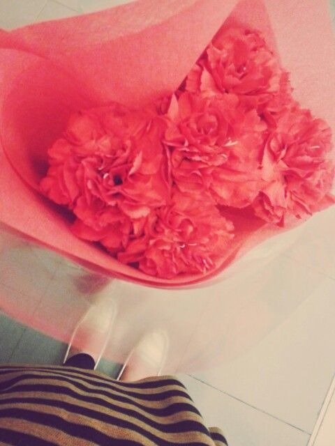 when roses are red is too mainstream. Here comes the carnations ♡