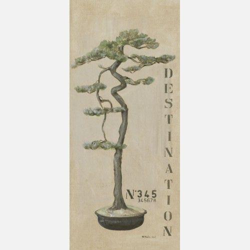 Editions de Visuels arbre 345