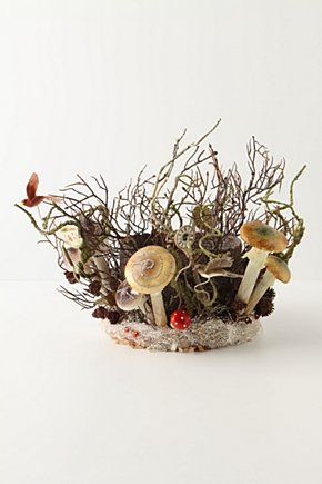 ...: Anthropologie Teem, Anthropologie Crowns, Awesome Trees, Forests Trees, Teem Forests, Fairies Crowns, Christmas Crowns, Christmas Trees Toppers, Tree Toppers