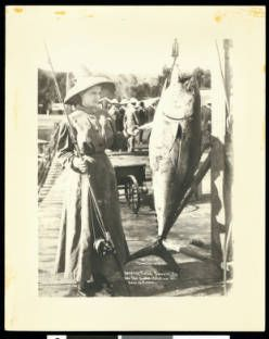 A large leaping tuna caught by Mrs. Phil. Omara, shown with catch, off Santa Catalina Island, September 15, 1909 :: California Historical Society Collection, 1860-1960