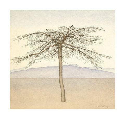 Rita Angus - Tree 1943  Gallery Prints