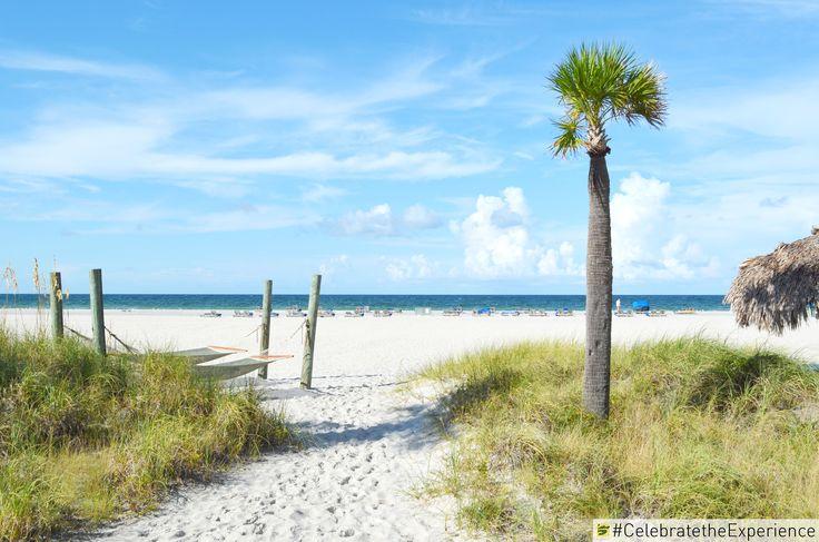 Beach Day Getaway at Sirata Beach Resort   #beach #resort #family #florida #gulf #palm #sand #sanddunes #sky #blue #stpete #stpetebeach #clearwater #tampa #hammocks #relax #vacation