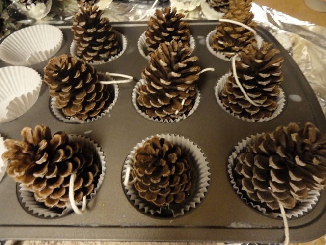 How to: Make DIY Fire Starters from Pine Cones .... I can make use of this idea. I have thousands of pine cones all over our property and we ue 2 woodstoves...like this!