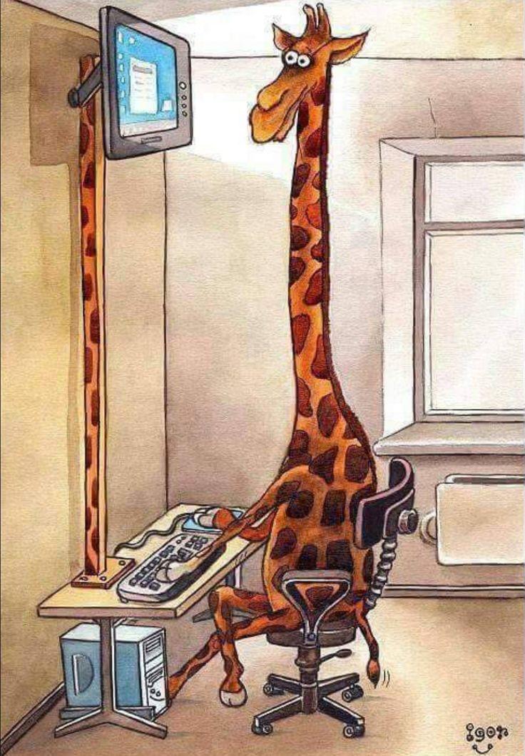 Снов анимашки, рисунок прикольный жирафа