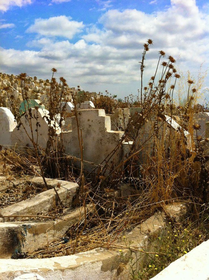 fes, muslim cemetery, photography by wardululu alsaffar