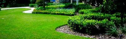 Instant lawns specialize in installation of New Sod, Install sod, laying sod and Landscaping Ottawa. Our partnership with Ottawa sod farms gets you the best price for sod installation in Ottawa. Contact the sod installation experts today