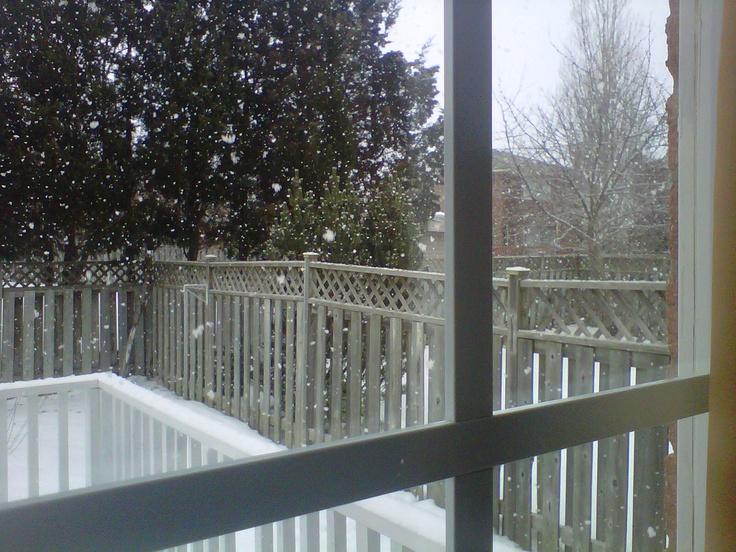 Winter Wonderland  T By Daniel. More than a tea company.     Written by Daniel Guadolupey, Francois Lewis    TaTa